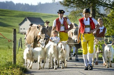 瑞士国家旅游局发力会奖产业,欧洲目的地首推奖励政策